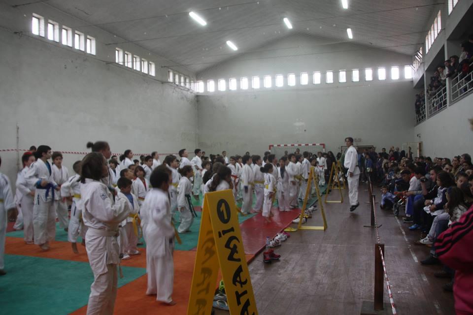 Judo em Alvarães