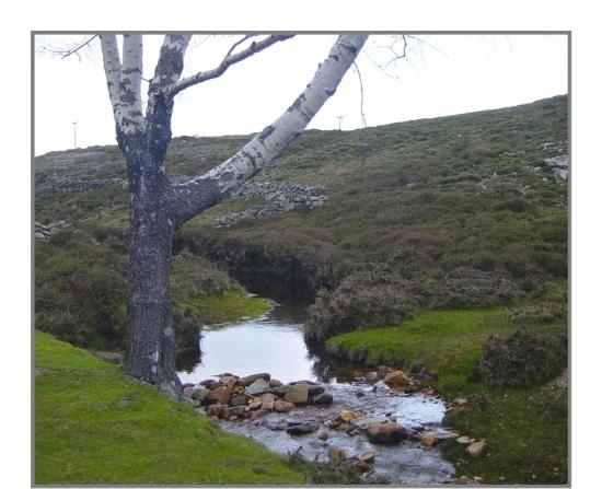 Limpeza e desobstrução de linhas de água